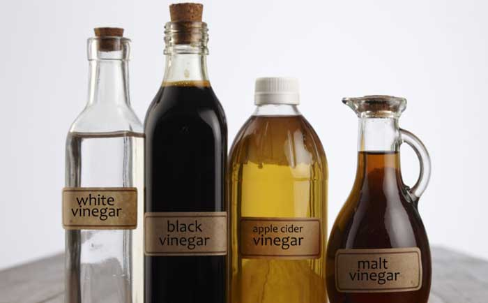 how does vinegar kill bed bugs