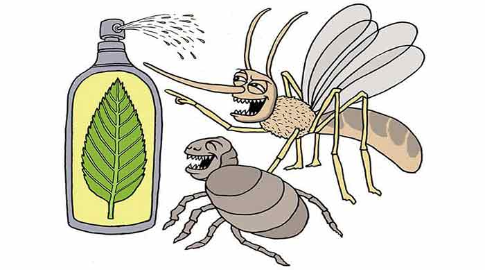bed bug repellents natural homemade reviews