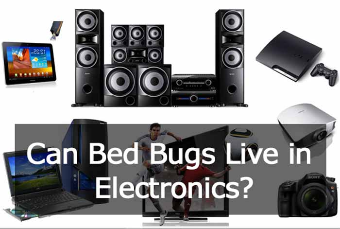 Dealing with bed bugs in electronics